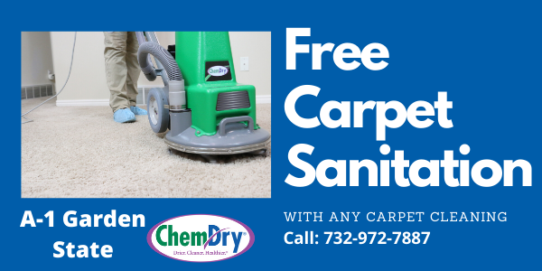 Professional Carpet Cleaning Of